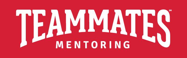 TeamMates_Mentoring-2018
